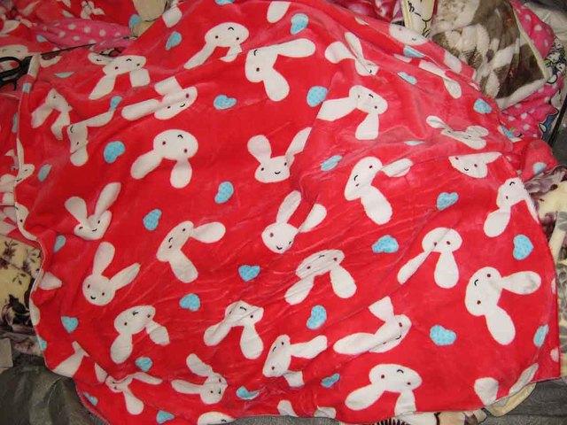 04_購入した毛布.jpg