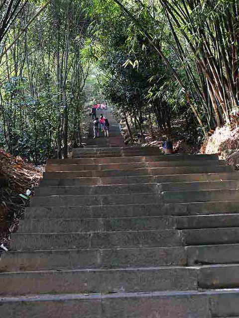 13_急階段.jpg
